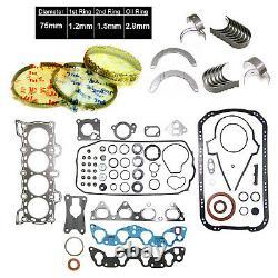 NEW 88-95 Honda Civic 1.5 16V SOHC D15B D15B1 D15B7 D15B8 Engine RE-RING Kit