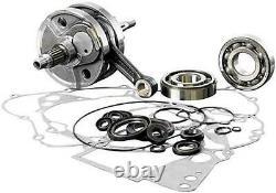 Suzuki 2007-2009 RMZ250 WISECO Top & Bottom End Engine REBUILD Kit Crank Piston