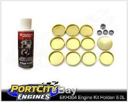 Moteur V8 Rebuild Kit Holden Commodore 304 5.0l Vn Vp Vr Vs Vt Efi Ekh304